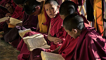 young-monks
